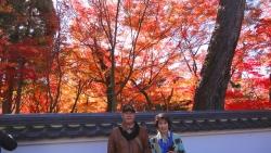 京都で紅葉を満喫