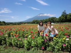 世界遺産の富士山