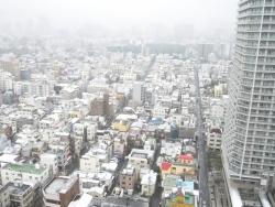 東京は大雪