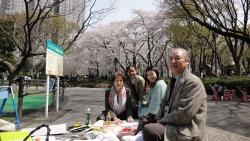 都庁前の中央公園の桜