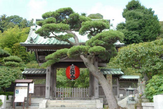 鎌倉での休日